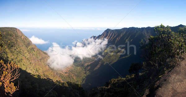 Brouillard vallée panoramique faible nuages commencer Photo stock © backyardproductions