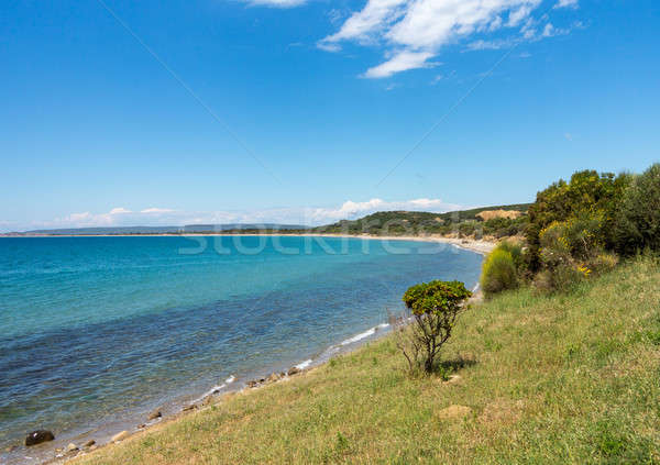 Beach and coastline at Anzac cove Gallipoli Stock photo © backyardproductions