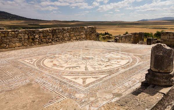 Ruins at Volubilis Morocco Stock photo © backyardproductions