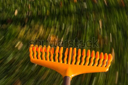 Motion blur on orange lawn rake leaves Stock photo © backyardproductions