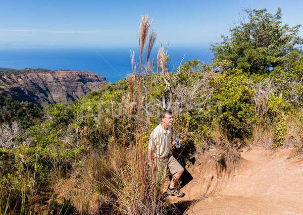 Sentier falaise au-dessus côte supérieurs Photo stock © backyardproductions