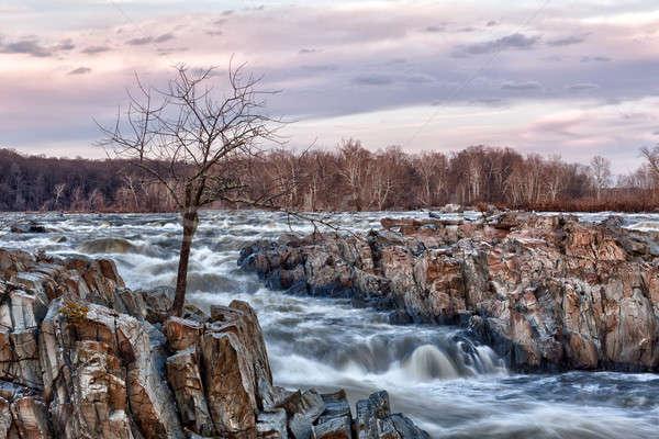 Nagyszerű Washington alkonyat folyó kívül Washington DC Stock fotó © backyardproductions