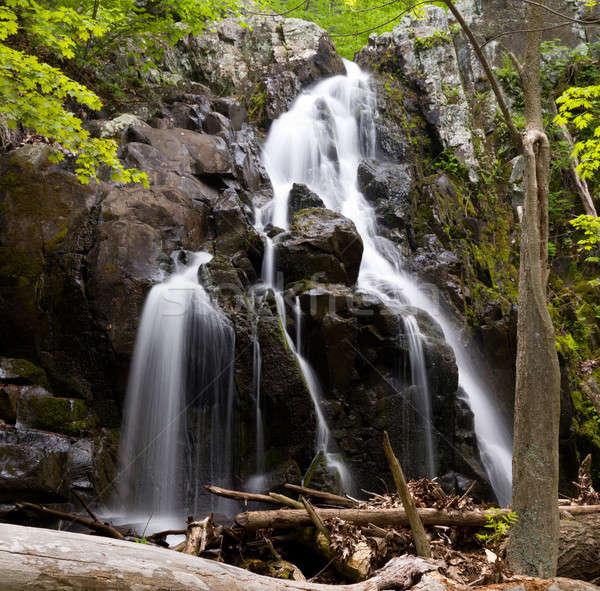 Overall Run waterfall Stock photo © backyardproductions