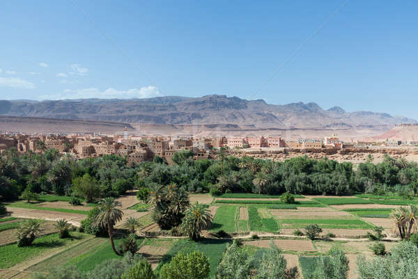 Tinghir in Morocco with green verdant valley Stock photo © backyardproductions