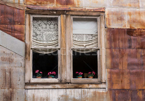 Windows in Ghost Town of St Elmo Stock photo © backyardproductions