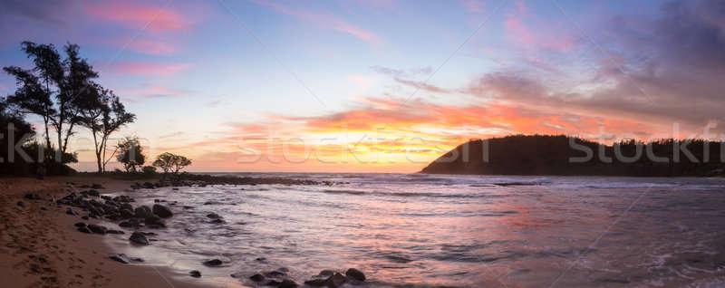 Sunrise at Moloa'a Beach, Kauai, Hawaii Stock photo © backyardproductions