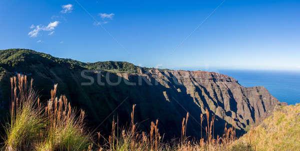 Stock photo: Awaawapuhi trail end on cliff above Na Pali coast on Kauai
