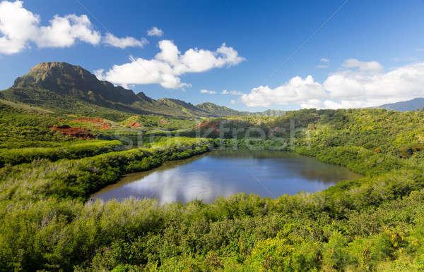 Menehune fishpond Kauai Hawaii Stock photo © backyardproductions