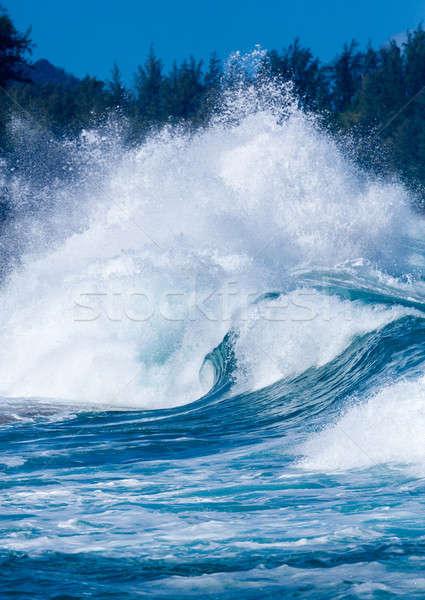 Krachtig golven pauze strand dramatisch crash Stockfoto © backyardproductions