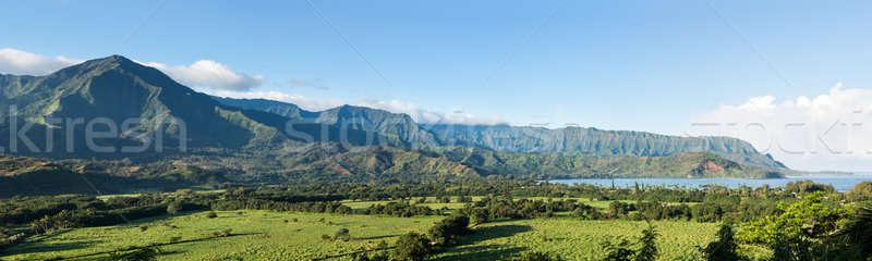 Panorama of Hanalei on island of Kauai Stock photo © backyardproductions