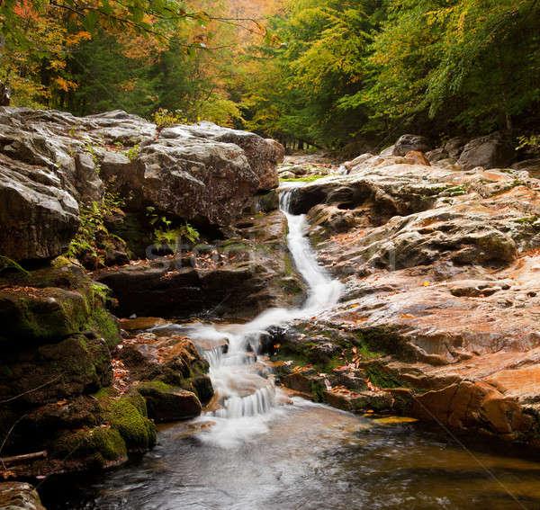 Water rushing down river Stock photo © backyardproductions
