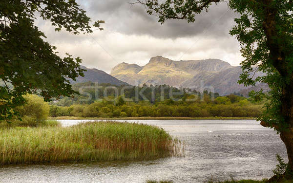 Sunrise at Elterwater in Lake District Stock photo © backyardproductions