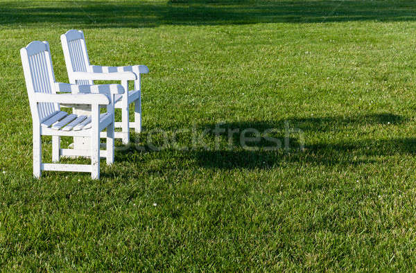 Pair of garden chairs on green lawn in garden Stock photo © backyardproductions