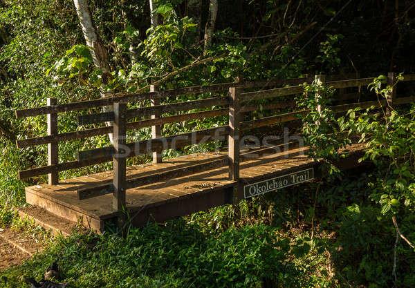 Entrance to Okolehao Trail Kauai Stock photo © backyardproductions