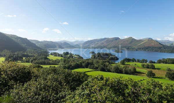 Derwent Water from Castlehead viewpoint Stock photo © backyardproductions
