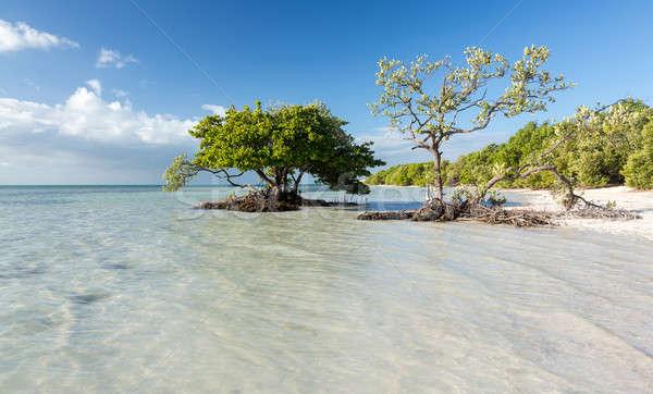 Flórida teclas praia beira da estrada rota céu Foto stock © backyardproductions