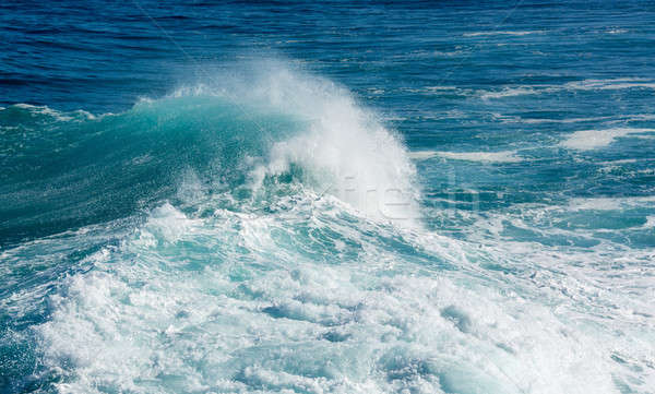 Frozen motion of large wave at sea Stock photo © backyardproductions