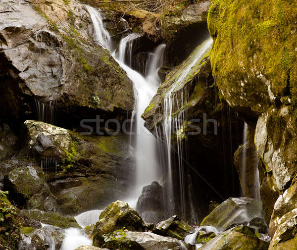 Place of a Thousand Drips in Smokies Stock photo © backyardproductions