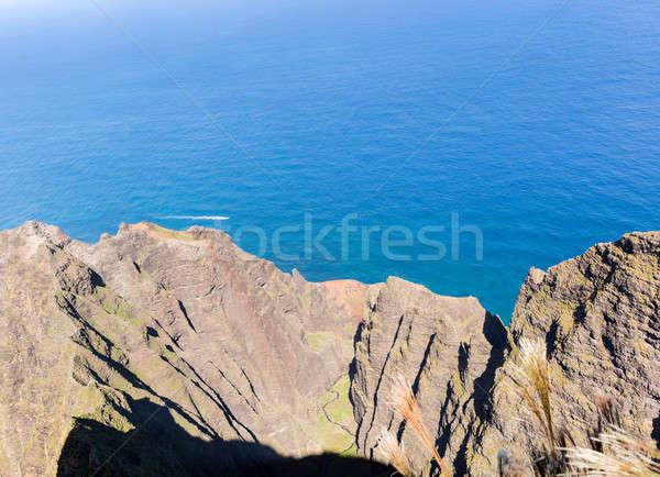 Sentier falaise au-dessus côte parc Photo stock © backyardproductions