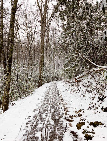 Yürüyüş dumanlı dağlar yürüyüş kar kapalı Stok fotoğraf © backyardproductions