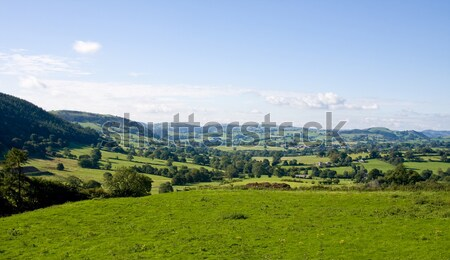 Rolling countryside in Wales Stock photo © backyardproductions