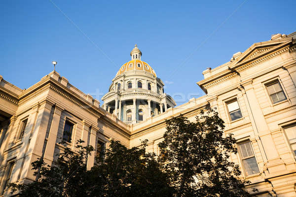 Gold covered dome of State Capitol Denver Stock photo © backyardproductions
