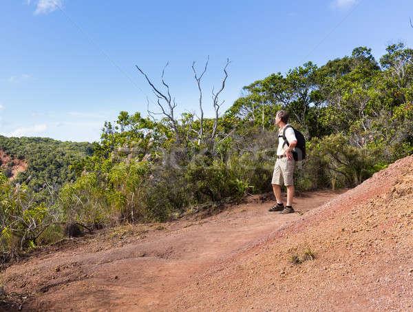Camino acantilado costa altos Foto stock © backyardproductions