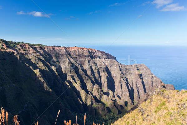 Szlak koniec Urwisko powyżej wybrzeża parku Zdjęcia stock © backyardproductions