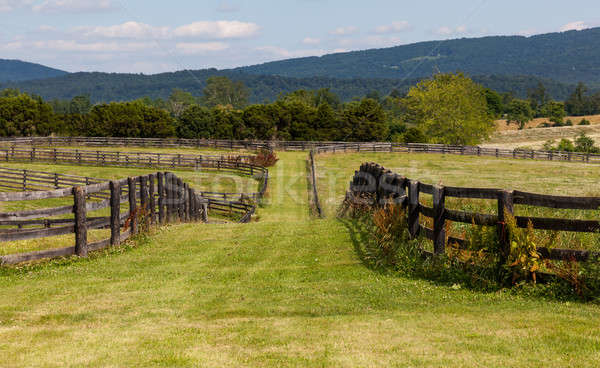 Rolling meadows with wooden fences and hills Stock photo © backyardproductions