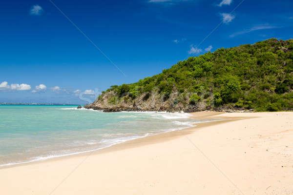 Happy Bay off coast of St Martin Caribbean Stock photo © backyardproductions