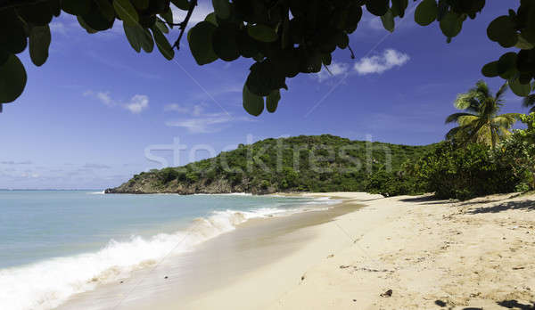Happy Bay off coast of St Martin Caribbean Stock photo © backyardproductions