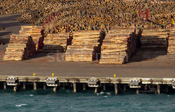 Stacks of tree trunks ready for export by sea Stock photo © backyardproductions