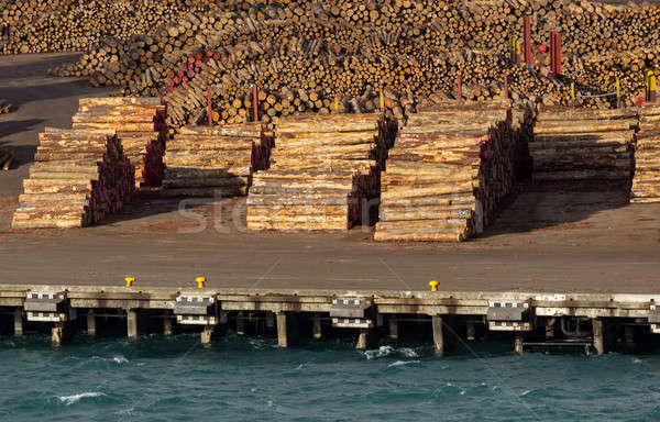 árvore pronto exportar mar cortar Foto stock © backyardproductions
