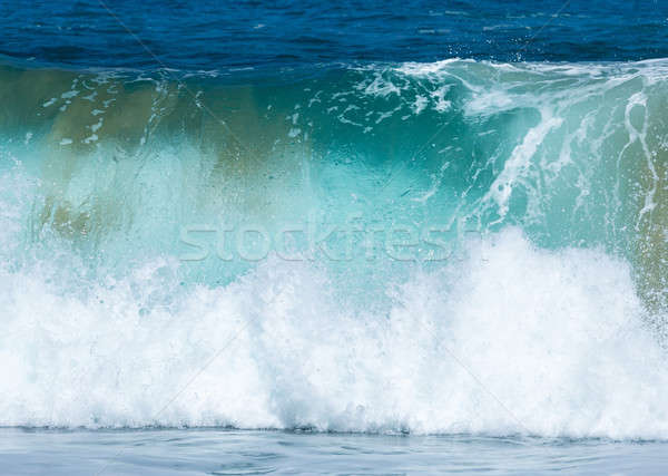 Frozen motion of large wave on beach Stock photo © backyardproductions