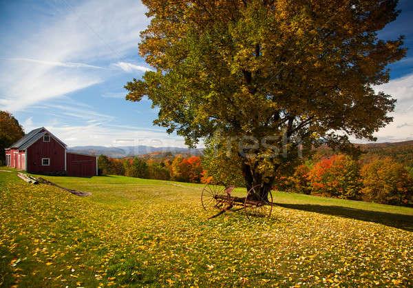 Autunno view Vermont caduta foglie colore Foto d'archivio © backyardproductions