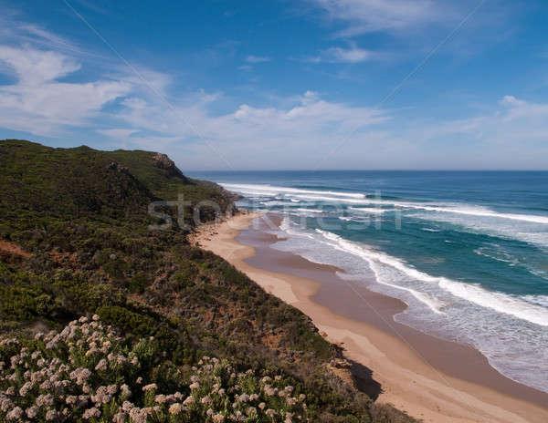 Coast near 12 Apostles in Australia Stock photo © backyardproductions