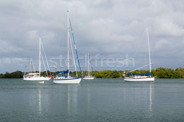 Yachts moored in no name harbor florida Stock photo © backyardproductions