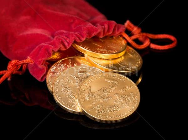 Coleção um moedas de ouro ouro Águia dourado Foto stock © backyardproductions