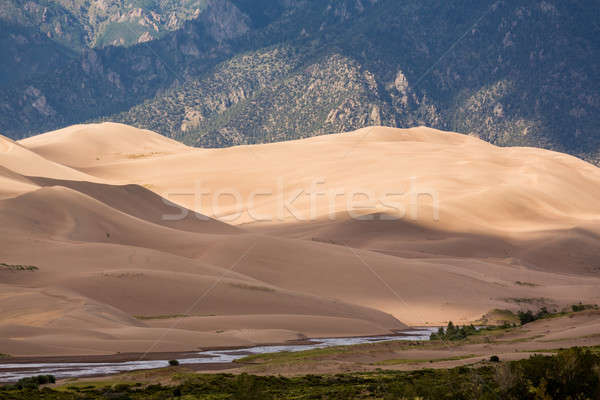 Detail of Great Sand Dunes NP  Stock photo © backyardproductions