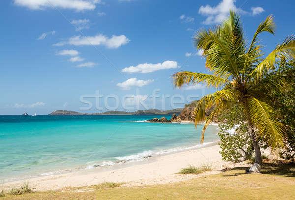 Beach scene St Thomas USVI Stock photo © backyardproductions