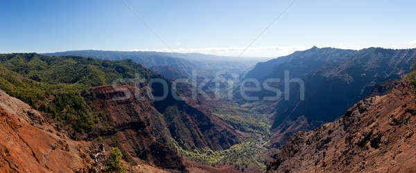 Waimea Canyon on Kauai Stock photo © backyardproductions