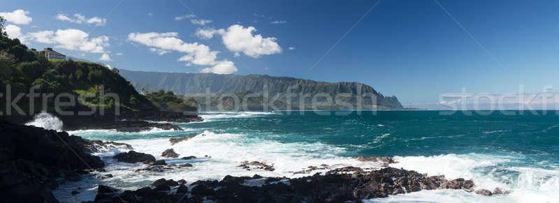 Waves hit rocks at Queens Bath Kauai Stock photo © backyardproductions