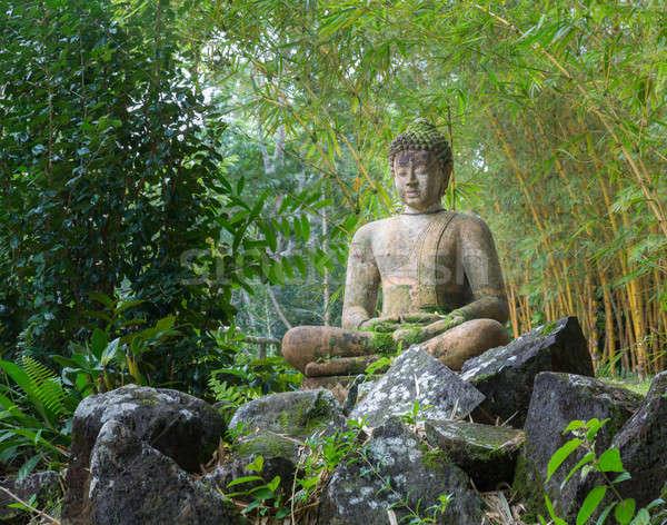Buddha standbeeld bamboe bos grond plantage Stockfoto © backyardproductions