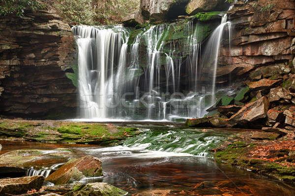 Nyugat-Virginia lassú fotó park erdő fák Stock fotó © backyardproductions
