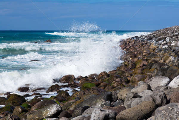 Rows of waves coming to shore Stock photo © backyardproductions