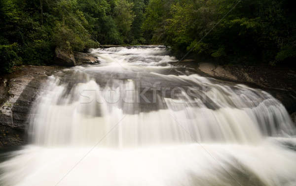 Turtleback Falls Waterfall in Gorges near Cashiers NC Stock photo © backyardproductions