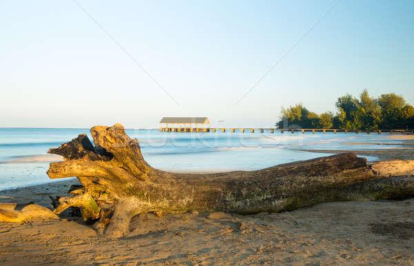 Pier of Hanalei on island of Kauai Stock photo © backyardproductions
