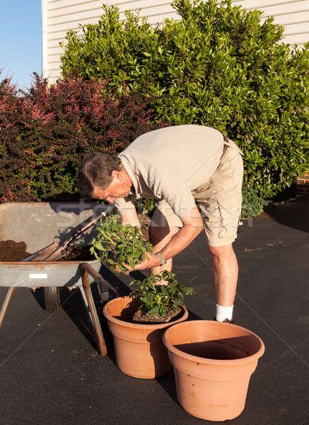 シニア 男 土壌 手押し車 男性 汚れ ストックフォト © backyardproductions