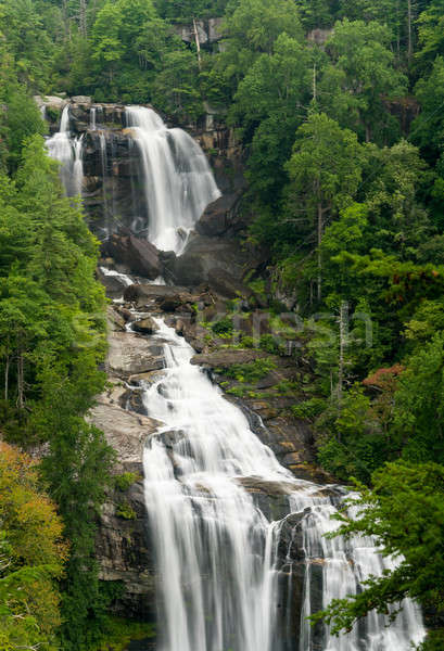 North Carolina waterval Oost saffier bos rock Stockfoto © backyardproductions