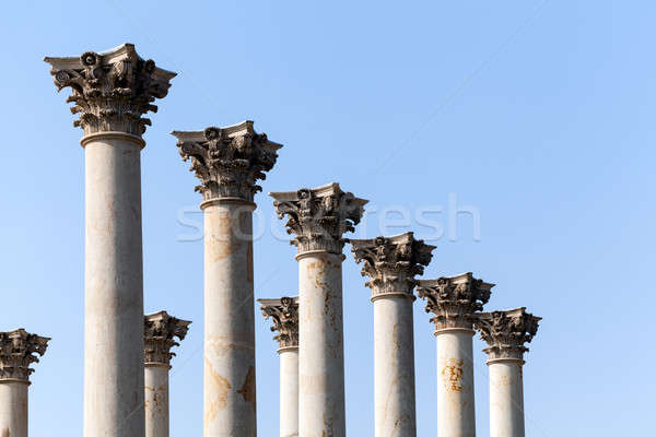 Capitol columns in National Arboretum DC Stock photo © backyardproductions